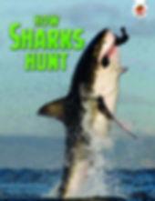 01 How Sharks Hunt UK pb cov v2.jpg