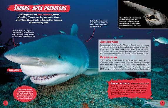 SHarks Hunt.jpg