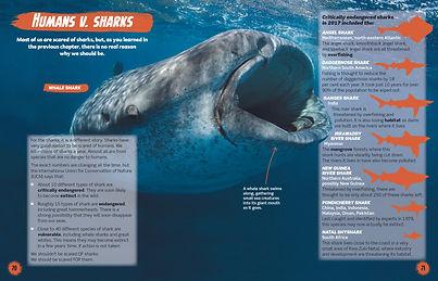 Shark-spread4.jpg