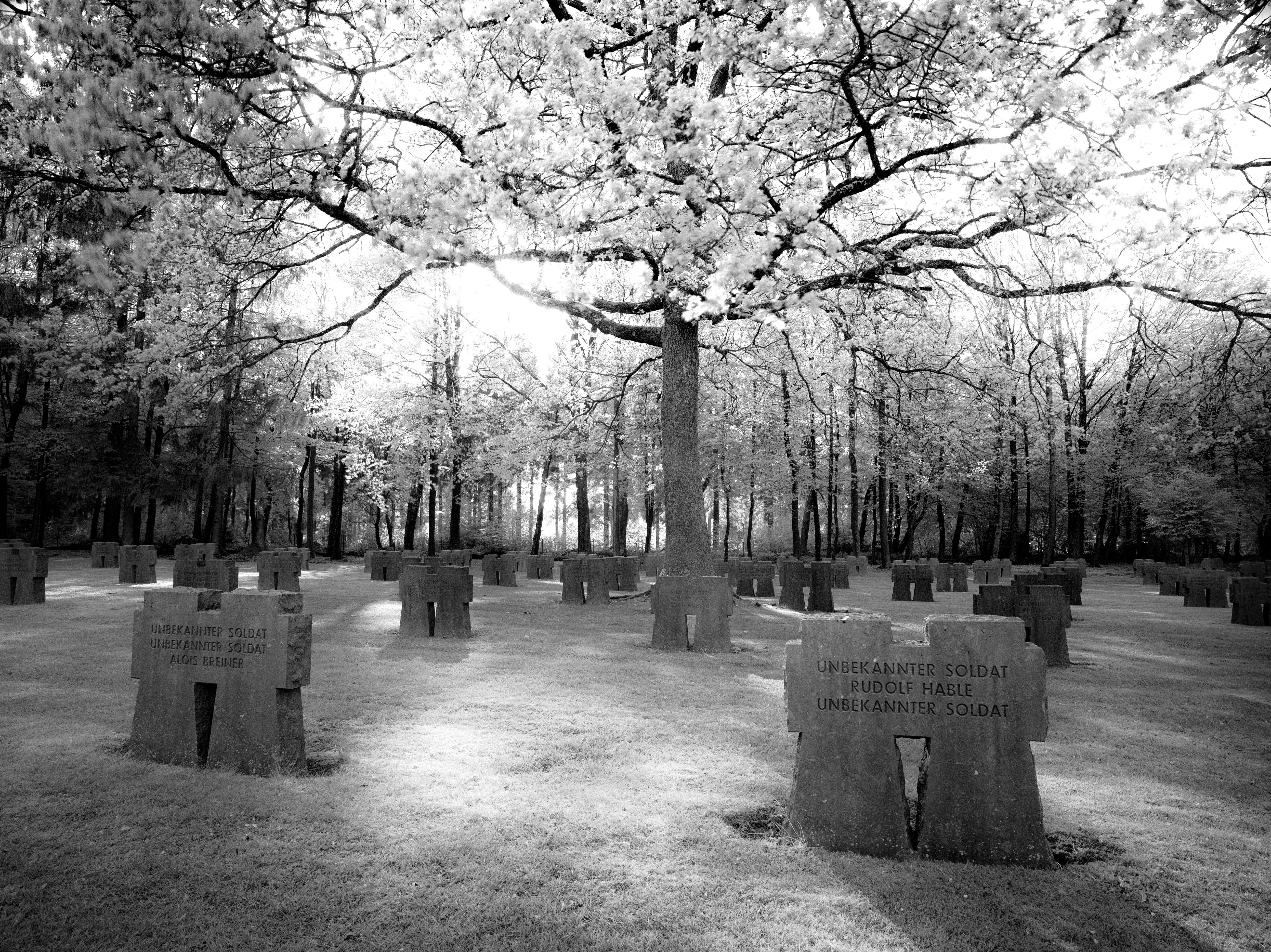 Hürtgen Forest Cemetery