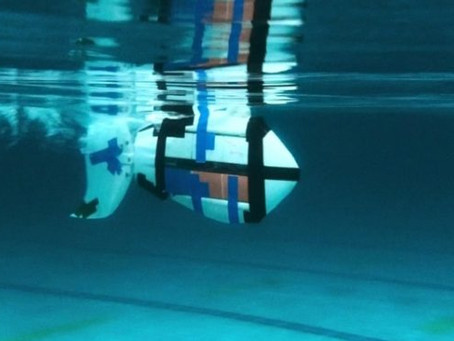 News clippings: HKU engineers develop robotic fish