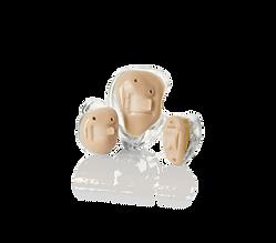 inside the ear hearing aids