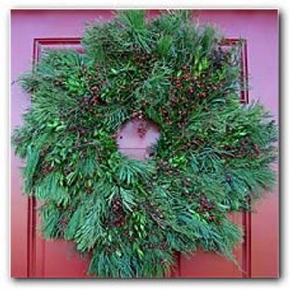 """Mixed #6 - 26"""" Wreath - Concolor Fir, White Pine, Juniper, Boxwood, Rosehips"""