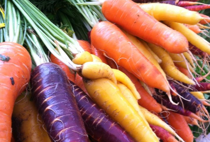 BUNCHED HEIRLOOM CARROTS (ORGANIC)