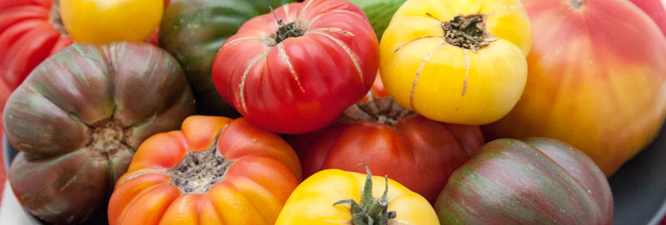 HEIRLOOM TOMATOES (LB)