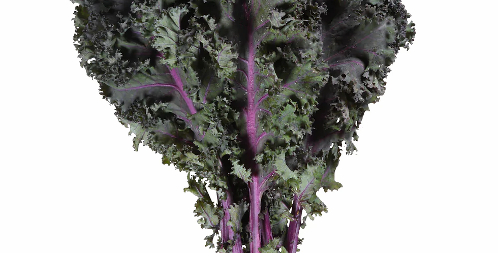 RED KALE (BUNCHED)