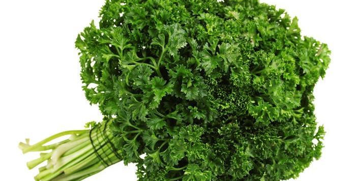 CURLY PARSLEY (BUNCH)