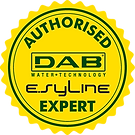 Esy Expert Badge - Yellow.png