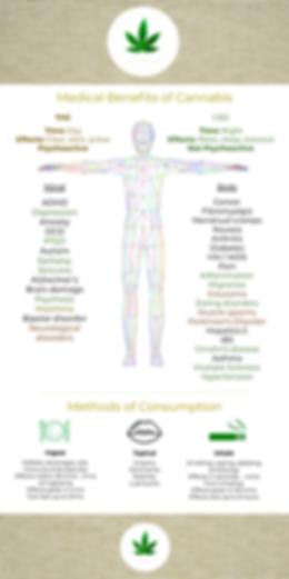 GWU - Medical benefits - final _.png