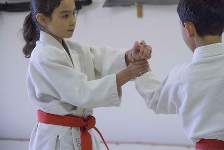 Aikido kids malaysia.jpeg