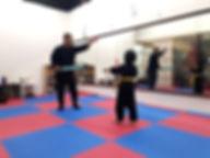 ninjutsu class for kids pj atria damansara ss2 ttdi