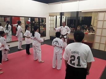 taekwondo for kids and teens pj damansara ttdi kelana jaya ss2 kl.jpg