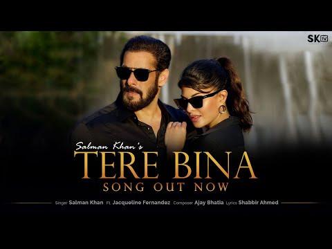 """TERE BINA"" LYRICS | Salman Khan | Hindi Songs Lyrics"