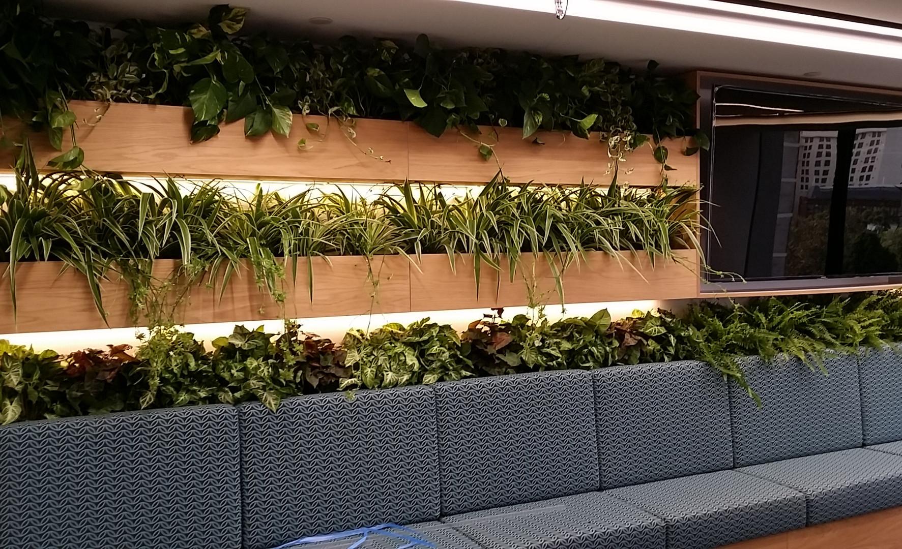 Green wall by Plantera