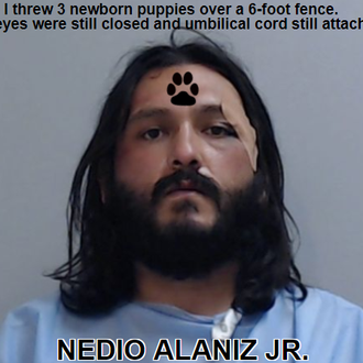 ALANIZ JR., NEDIO - Texas, USA