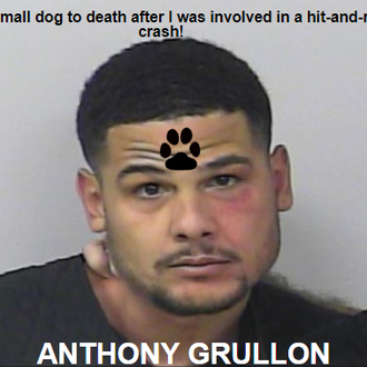 GRULLON, ANTHONY - Florida, USA