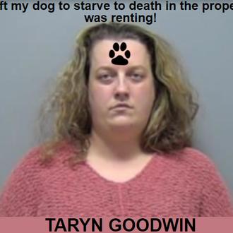 GOODWIN, TARYN - Illinois, USA