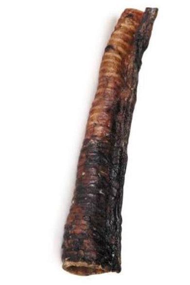 Large Plain Beef Trachea