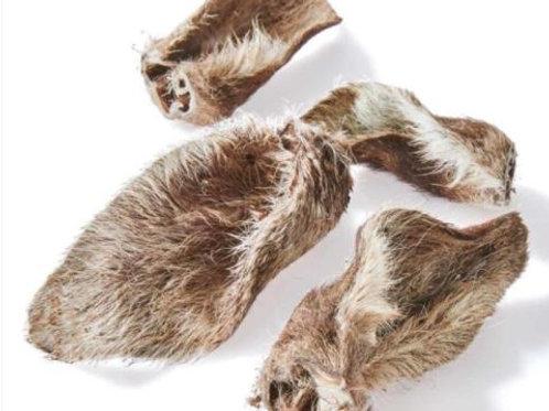Furry Kangaroo Ears