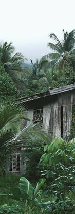 Houten huis in het bos