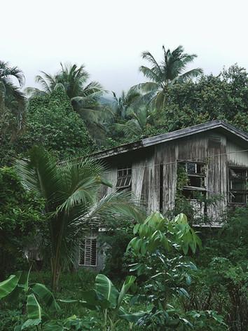 Holzhaus im Wald