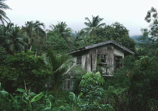 Amazonas Haus