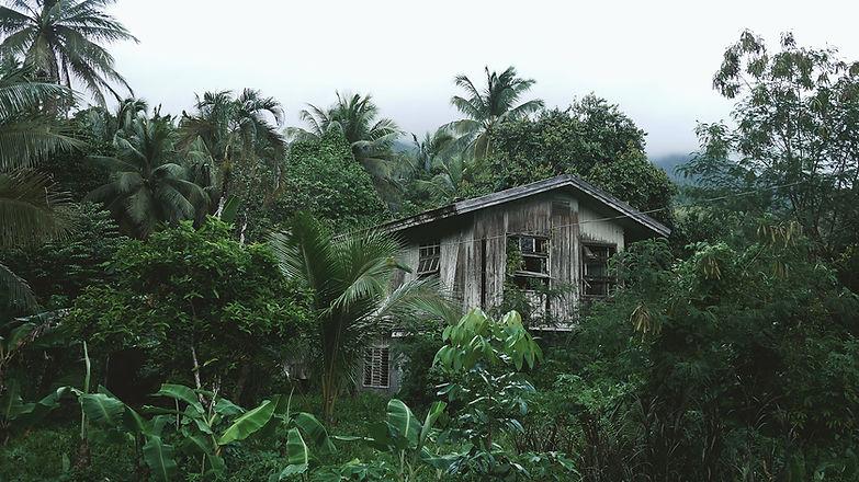 Casa di legno nella foresta