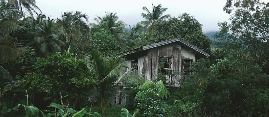 De la richesse à l'effondrement, l'exemple d'une île