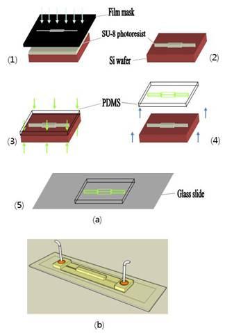 Hemicylindrical fluidic lens fabrication using single casting and light scanning application