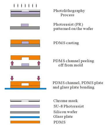 Hydrogel microparticles fabrication using microfluidic devices