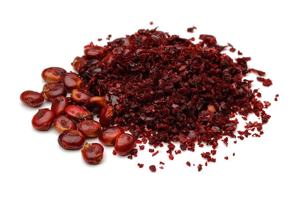 Ground Sumac and berries isolated on whi