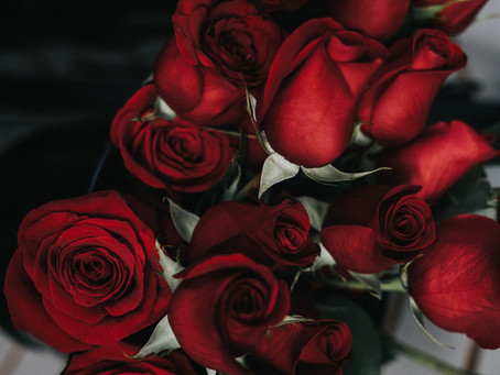 Stop And Smell The Roses: Dealing with Discontentment