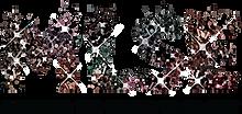MLSE_logo_col_160 (1).png