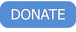 Donate button.png