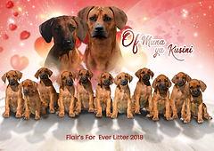 26. června 2018 se v chovatelské stanici Muna ya Kusini, Švýcarsko narodilo 11 zdravých, krásných zázraků.