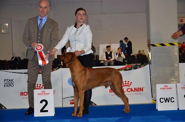 Evropská výstava psů 2018 1.jpg