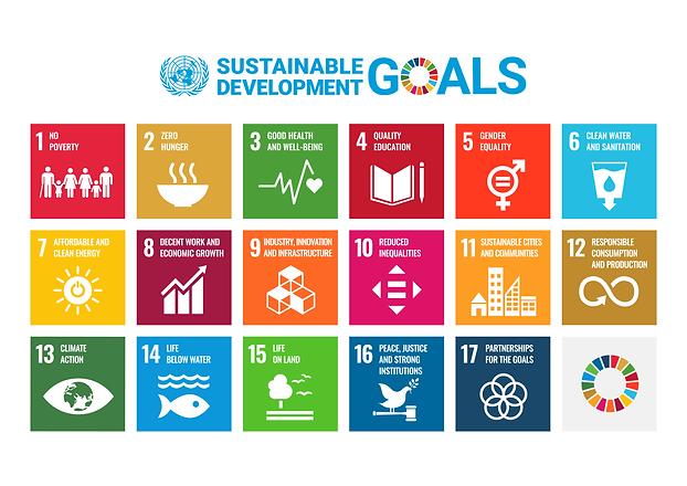 E_SDG_poster_UN_emblem_WEB 2020.png