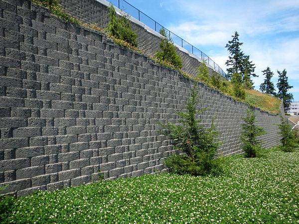 GravityStone Edge - Master Park Seattle