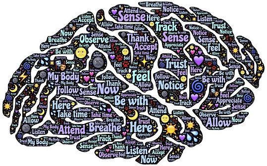 meditation-1000062_1280-1030x642 brain.j