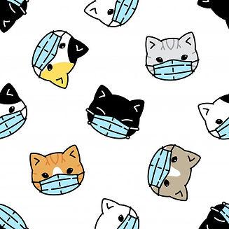 Covid Kitties.jpg