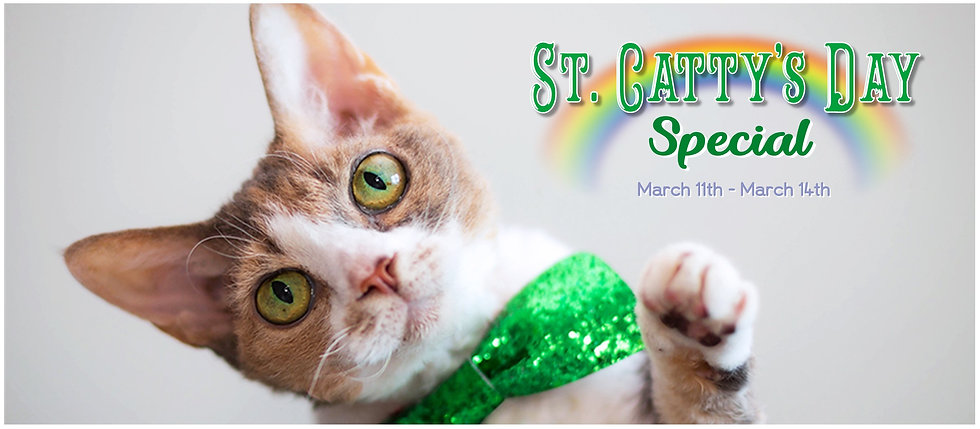 St. Cattys Day Special FB Cover Photo.jp