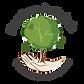 Mein_Baum_Logo-01.png