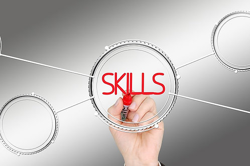 Sales Skills Index & Training