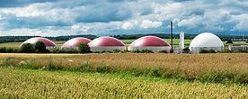 Biogas,Biomass,RSA,South,Africa