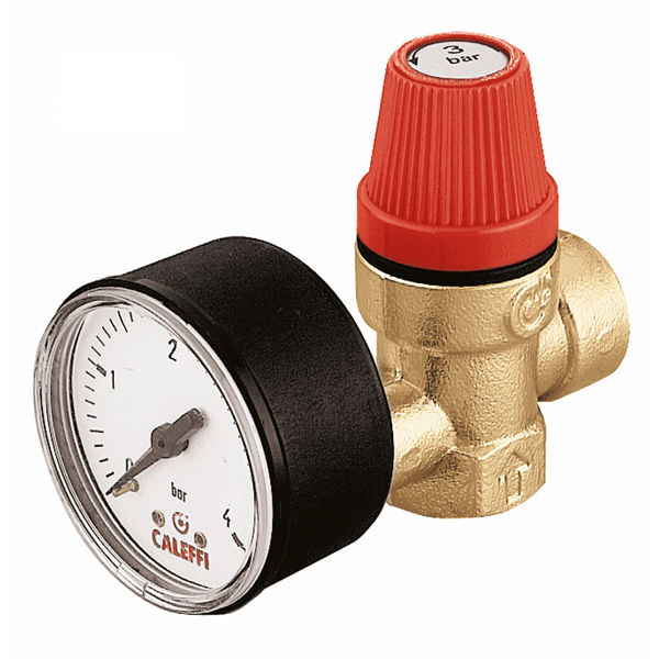 Safety_Relief_Valve_313.jpg