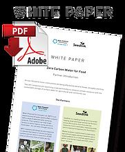 Seedlink-White-Paper.png