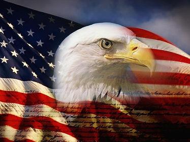 bald-eagle-head-and-american-flag_u-L-PZLW2I0.jpg