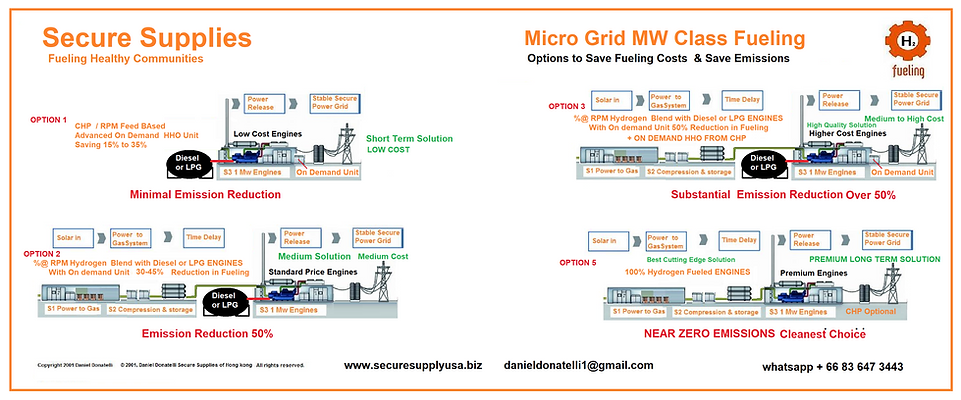 Microgrid Fuelign Options