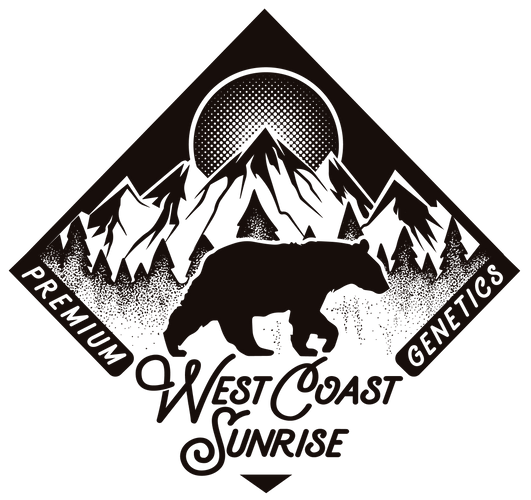 New logo file WCS-01.png
