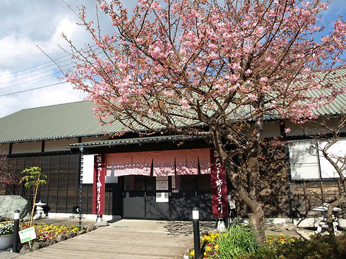 文化公園雛の館.JPG